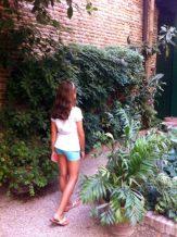 Buscando al mirlo en el jardín