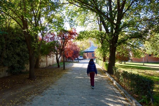 Camino que lleva al Huerto de El Retiro