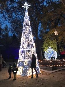Luces de Navidad en el Real Jardín Botánico