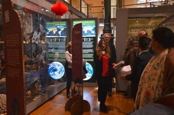 Inauguración de la intervecnión hecha en Biodiversidad con motivo de la celebración del nuevo año chino.