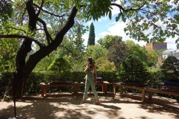 Jardín de los Bonsáis